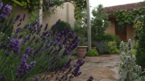 an-introduction-to-rustic-tuscan-gardens.WidePlayer